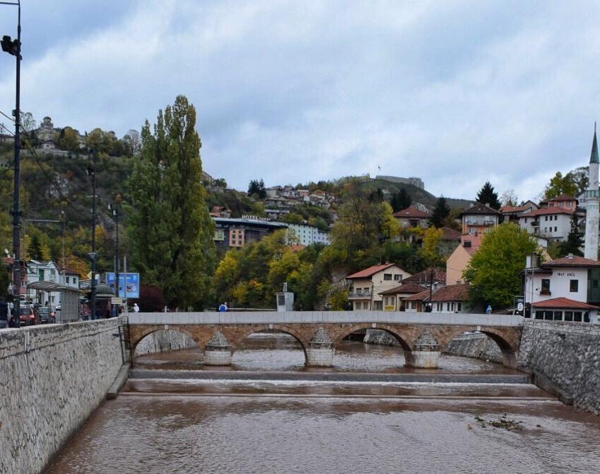 latin bridge sarajevo The ash tree journal