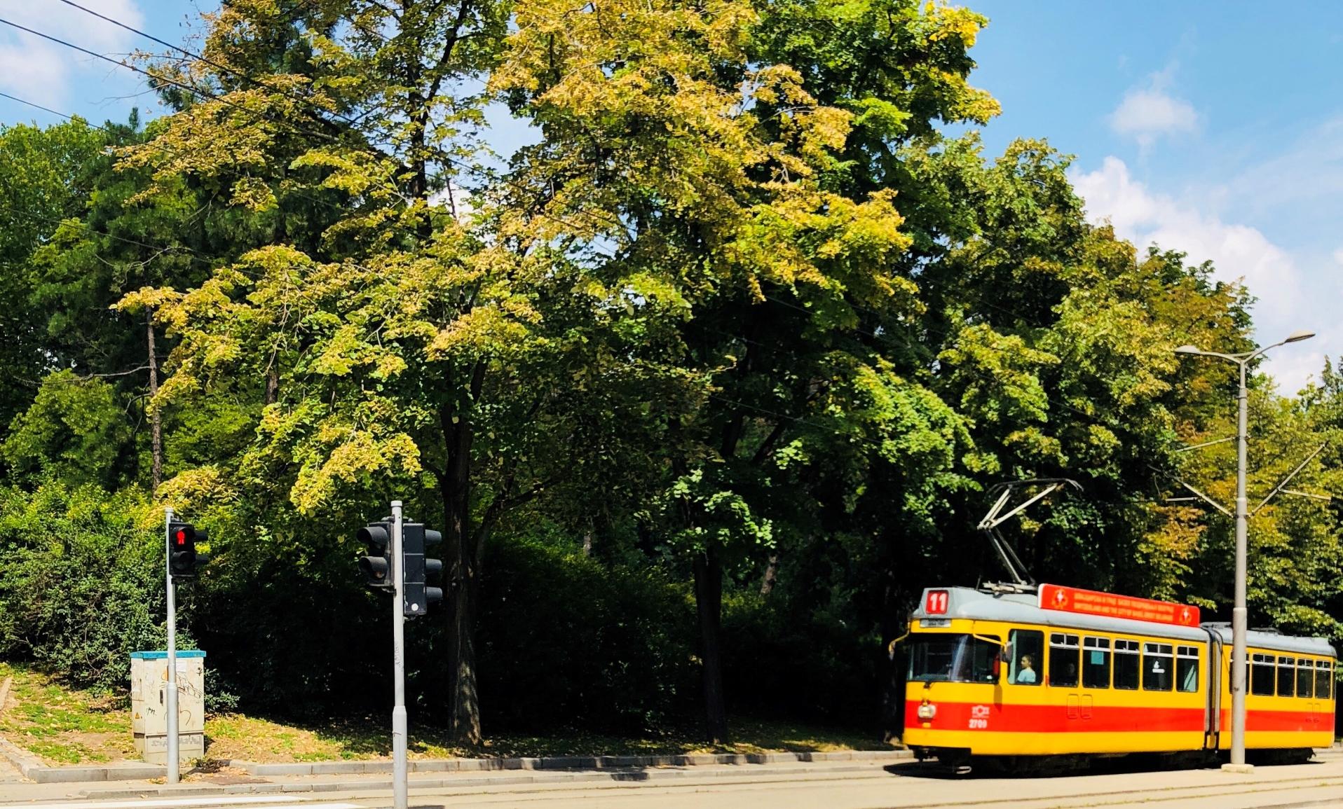 theashtreejournal belgrade trams